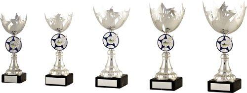 Star Design Cup Trophy
