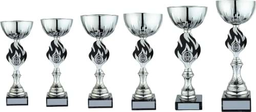 Silver Black Cup Awards