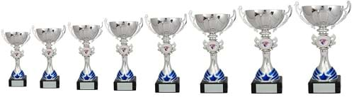 Cup Trophies Silver Blue Star