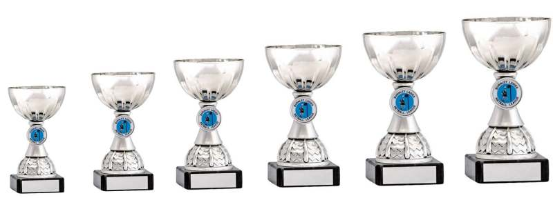 Silver Bowl Cup Trophies 1914 Series