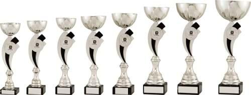 Silver Bowl Cup Trophy on Black Stem