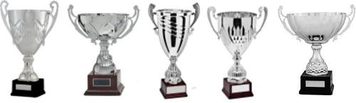 Trophy Cups Low Priced