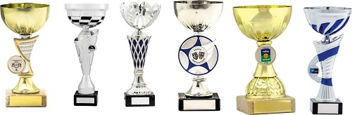 Bowl Cup Trophies Low Prices